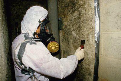 asbestos   removal   option