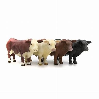 Bull Angus Hereford Herd Toys Buster Animals