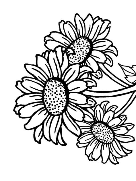 sunflower coloring pages   print sunflower