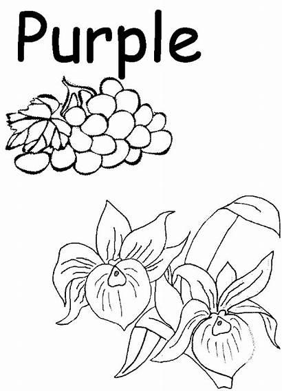Purple Coloring Preschool Worksheets Printables Homeschool Colors
