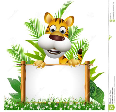 tiger cartoon  board stock photography image