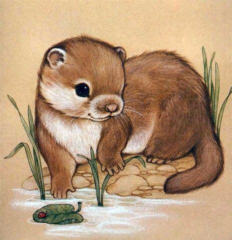 otter gezeichnet tiere zeichnen suesse tiere zeichnen