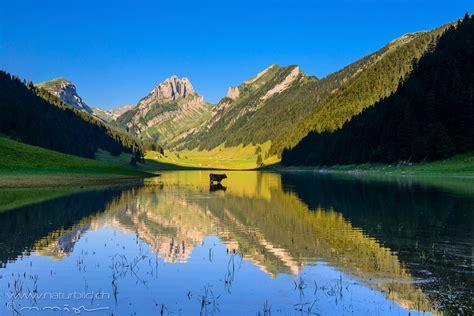 fotos aus den kantonen appenzell naturbildch
