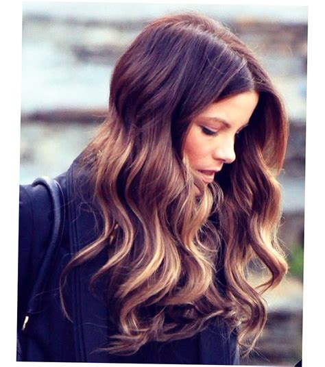 Balayage Highlights On Dark Hair Style Ellecrafts