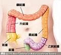 大腸直腸腫瘤醫學@塵封往事|PChome 個人新聞台