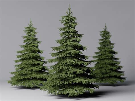 fir tree  logicdesign docean