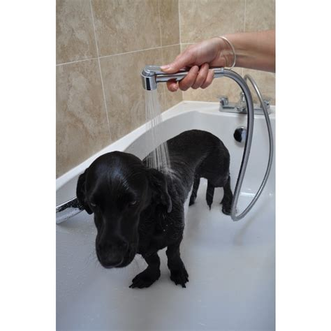 indoor pet wash pack perfect   dogs cats