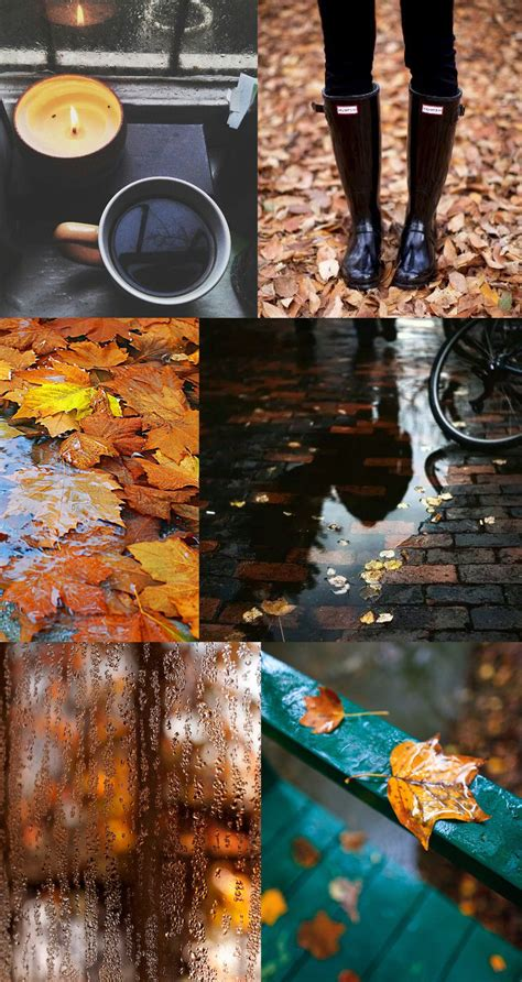 create  fall inspiration board