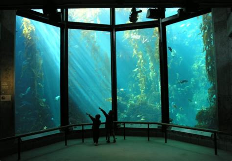 a rent increase after 35 years monterey bay aquarium faces assessment non profit news