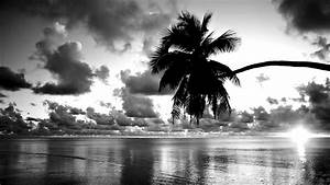 Pretty Black and White Wallpaper 27055 1600x900 px ...
