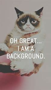 Grumpy Cat Great I Am A Background iPhone 6 Wallpaper ...