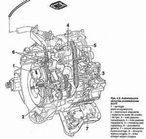 Fiat Punto    Forum  U2022 Zobacz Temat