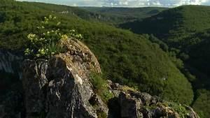 Leboncoin Tarn Et Garonne : le tarn et garonne au fil de vos envies youtube ~ Medecine-chirurgie-esthetiques.com Avis de Voitures
