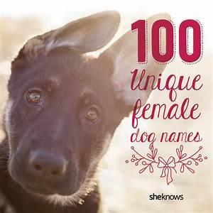cute black and white female dog names