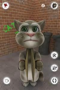 tom the cat tom cat