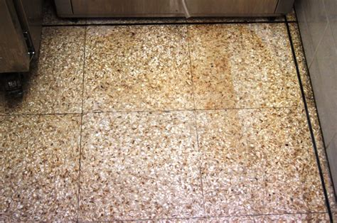 Clean Terrazzo Floor Stains by Terrazzo Tile Cleaning Tile Doctor Lancashire