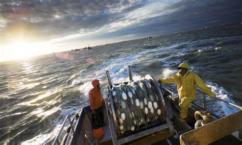 Crab Fishing Boat Jobs by Why Was Alaskan Fishing Named The Most Dangerous Job In