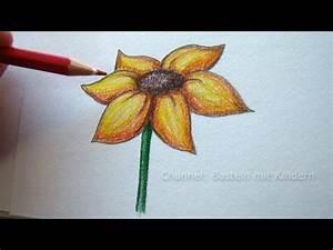 Zeichnen Lernen Mit Bleistift : zeichnen lernen blume zeichnen blumen malen lernen youtube ~ Frokenaadalensverden.com Haus und Dekorationen