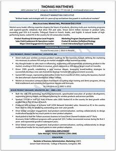 Executive resume samples professional resume samples for Professional executive resume