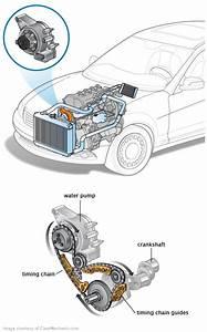 2003 Chevy Impala Belt Diagram