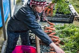 Community of women-owned, first-generation farms growing…