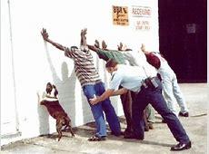 Hund bei Polizeikontrolle Bild Witz