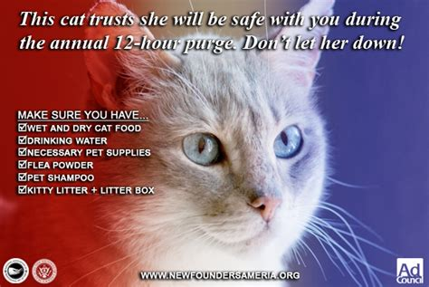 Purge  Ee  Pet Ee   Safety Ads For Cat Owners By Fearoftheblackwolf On Deviantart