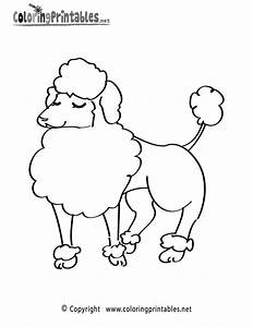 free poodle coloring pages coloring home With poodle template printable
