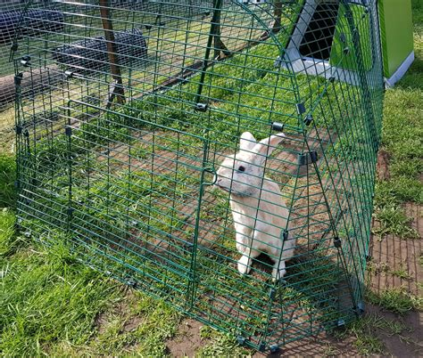 omlet rabbit hutch omlet eglu go rabbit hutch and run review living