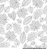 Coloring Pages Leaves Adult Pattern Autumn Colorpagesformom Leaf Tattoo Uploaded User sketch template