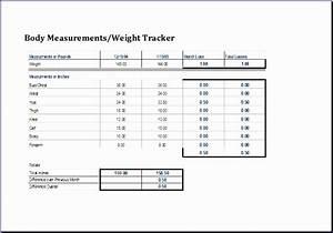 Ms Excel Gantt Chart Template 8 Personal Weight Loss Chart Excel Templates Excel