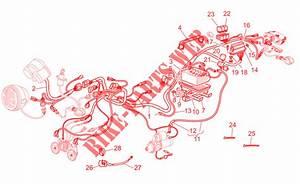 Electrical System For Moto Guzzi V 11 Le Mans 2002   Moto Guzzi Online Genuine Spare Parts Catalog