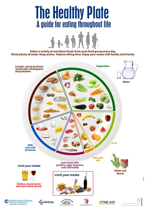 Diagram Of Healthy Plate by Posters