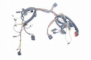Harley Stereo Wiring Harnes