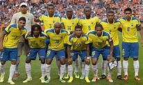 Ecuador: World Cup 2014 team guide | Football | The Guardian