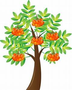Arbre A Fruit : tubes arbres feuilles branches 6 page 4 ~ Melissatoandfro.com Idées de Décoration