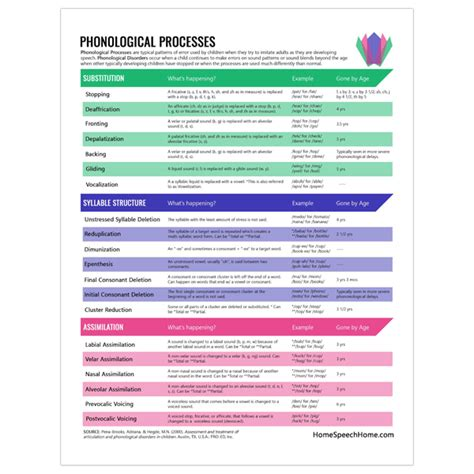 phonological processes    articulation