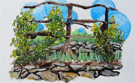 Grape Vines Philadelphia Orchard Project