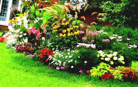 flower garden ideas beginners  backyard goodhomezcom