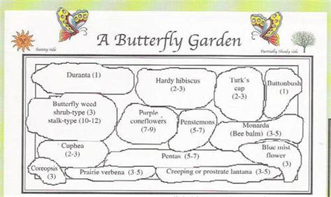 if you build it butterflies will come the lazy gardener