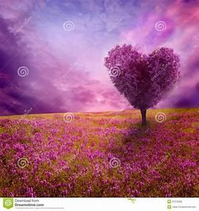 Baum Der Liebe : baum der liebe stockfoto bild von inneres liebe drau en 37616208 ~ Eleganceandgraceweddings.com Haus und Dekorationen