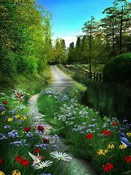 Pinterest Beautiful Nature