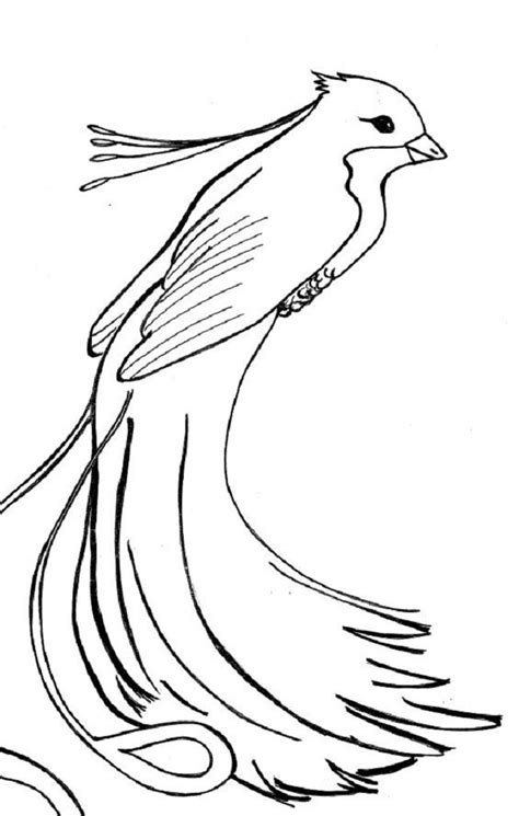 phoenix bird rising colouring pages | Bird coloring pages
