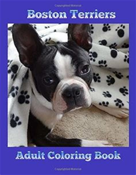 boston terrier dog coloring page  kids animal coloring