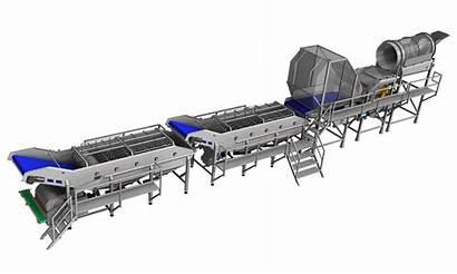 Processing Line Spinach Equipment Pollak Sala Machines