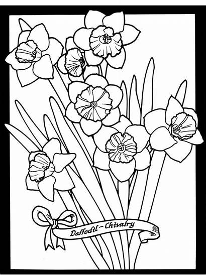 Coloring Stained Glass Flowers Dover Pages Colouring