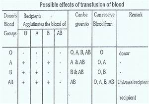 Blood Inheritance Chart Blood Group Inheritance Biozoom