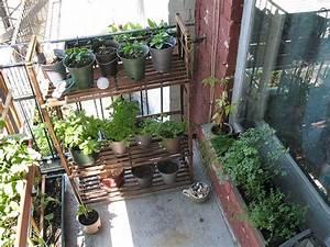 Amenager Petit Balcon Appartement : am nager un balcon potager le coin potager ~ Zukunftsfamilie.com Idées de Décoration