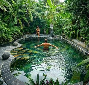 Beautiful, Backyard, Swimming, Pool, Design, 670