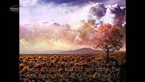 """Beautiful Things"" by Gungor (lyrics) - YouTube"